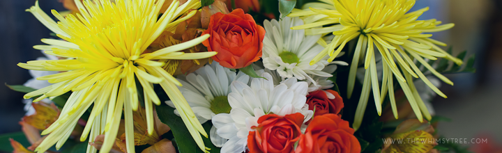 Brighten Someone's Day – North Judson Florist